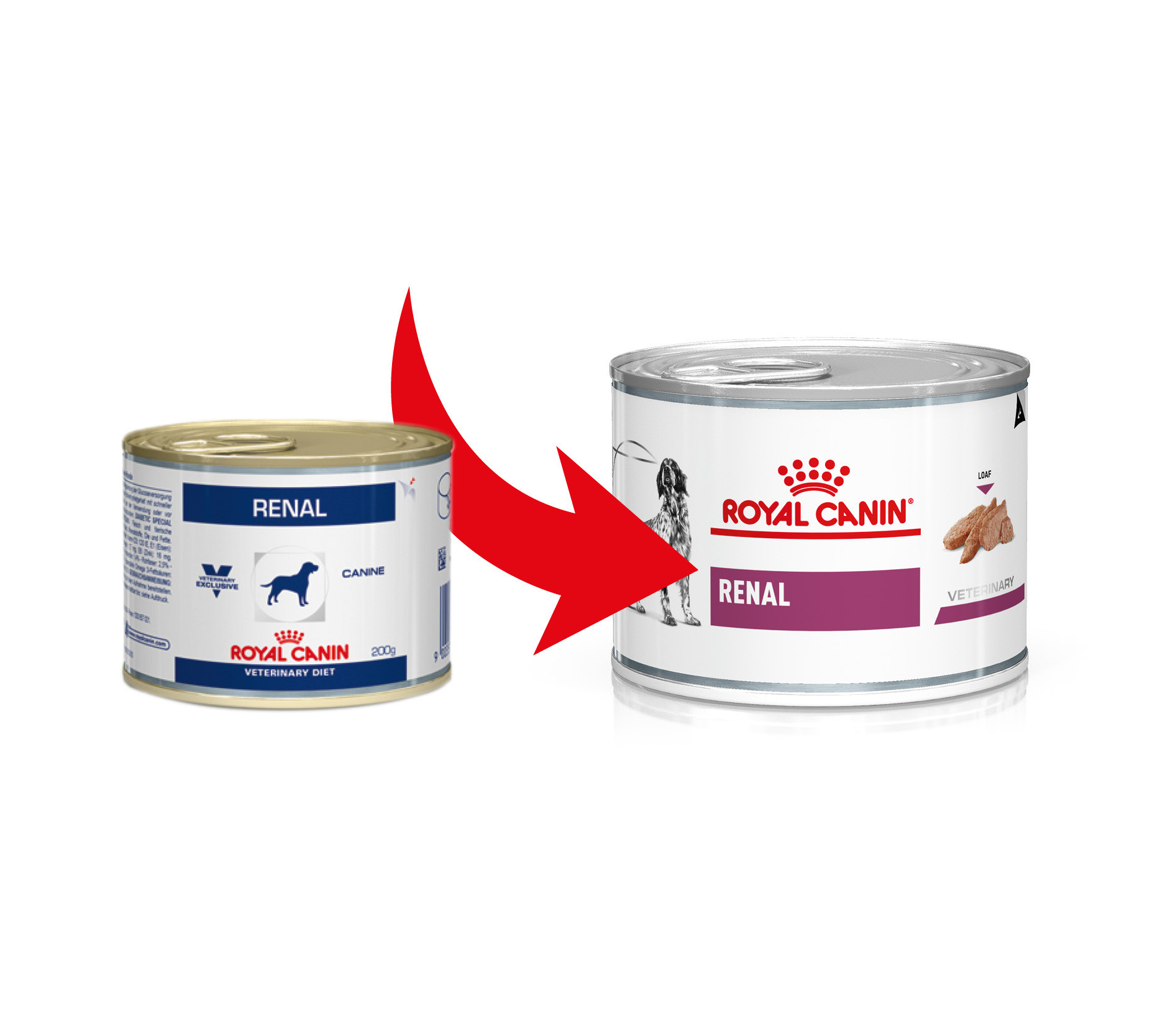Royal Canin Renal (in scatola) per cane 200 g