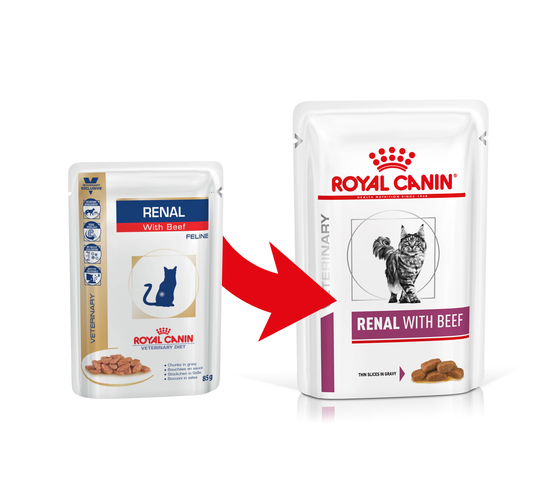 Royal Canin Veterinary Diet Renal con Manzo cibo umido per gatto