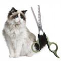 Cura del Pelo del Gatto